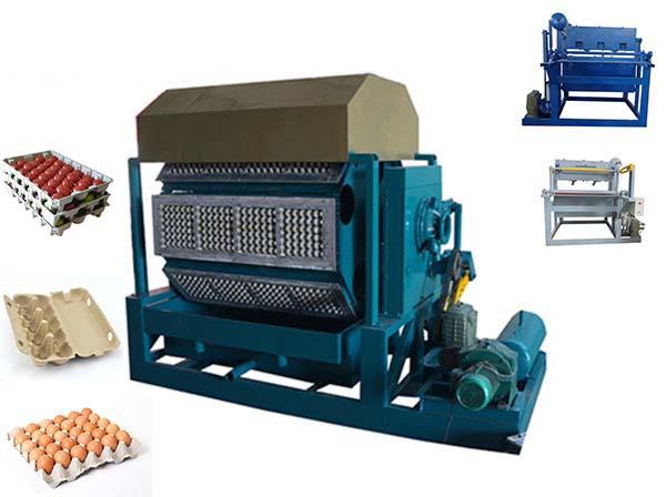 Different Pulp Molding Machines